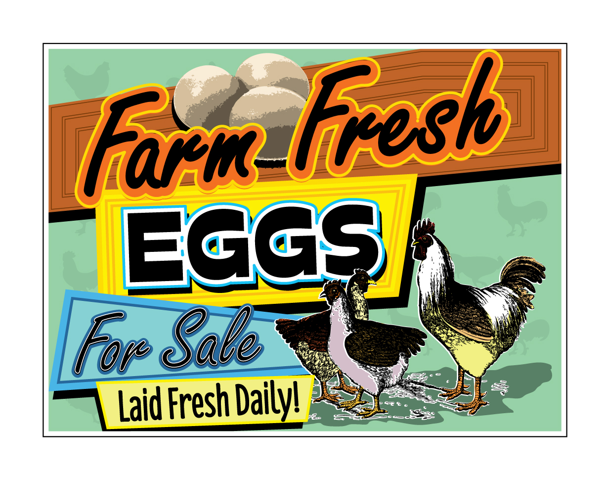 buy our  u0026quot farm fresh eggs for sale u0026quot  retro corrugated