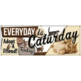 Everyday Is Caturday Adopt a Friend banner image