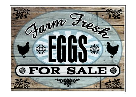 Farm Fresh Eggs For Sale Aluminum 18x24 sign image