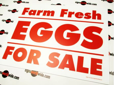 Farm Fresh Eggs Red and White sign image