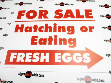 For Sale Hatching Eggs Right Arrow