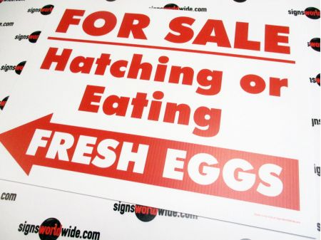For Sale Hatching Eggs Left Arrow