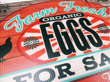 Farm Fresh Eggs Orange and Green 2